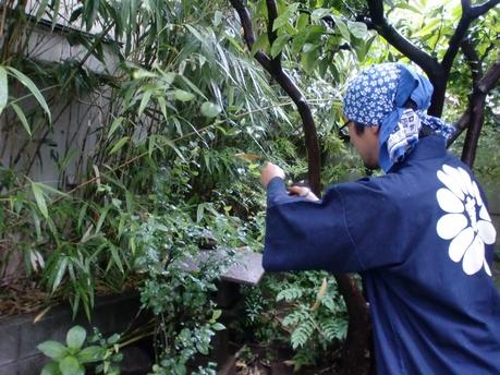 庭木の剪定・お手入れの智沙屋造園の写真